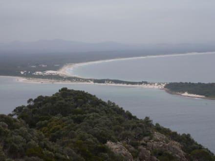 Blick vom Tomaree Head / Port Stephens - Tomaree Head