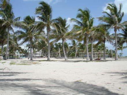 Sarasota Beach - Sarasota Beach