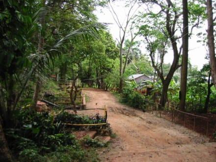 Natur Park Cabarete - Nationalpark El Choco