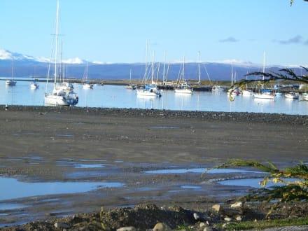 Beach/Coast/Harbor - Harbor Ushuaia
