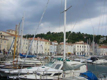 Hafen von Piran - Altstadt Piran