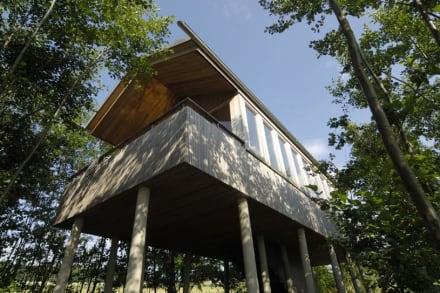 baumhaus im hofgut bild hofgut hafnerleiten in bad birnbach bayern deutschland. Black Bedroom Furniture Sets. Home Design Ideas