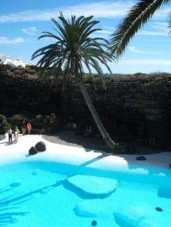 Pool bei Jameos des Agua - Jameos del Agua Cesar Manrique