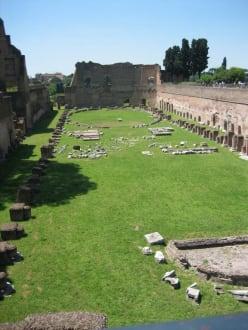 Das Stadion des Domitian - Palatino