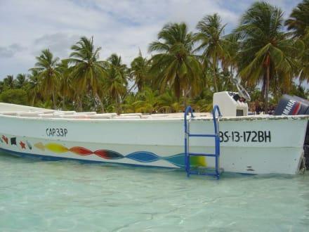 Speedboat vor Saona - Isla Saona