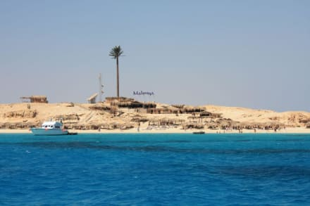 Insel Mahmya - Giftun / Mahmya Inseln