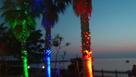 Nachtbild zum Stand - Lonicera World Hotel