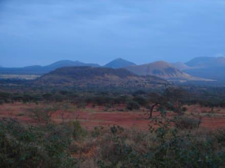 Tsavo West - Tsavo West Nationalpark