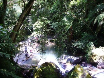 Yangmingshan - Wasserfall - Yangmingshan Nationalpark