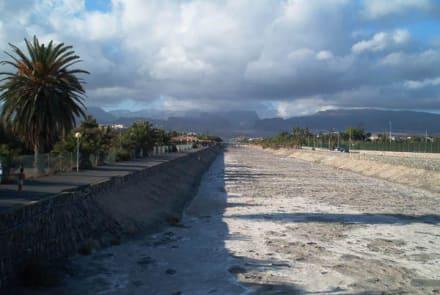 Urlaub auf Gran Canaria - Naturschutzgebiet La Charca