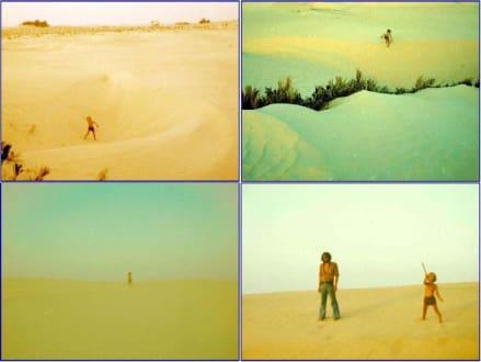 In der Wüste Sahara bei Douz - Saharaausflug