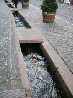 Freiburgs Bächle am Münsterplatz - Fußgängerzone Freiburg