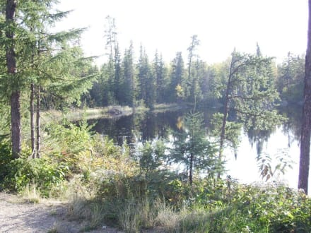 Am Halfway Lake - Halfway Lake Provincial Park