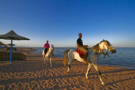 Spiaggia dell'hotel -