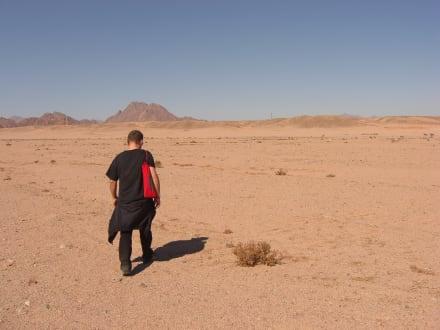 Sonstiges - Wüstentour Sharm el Sheikh