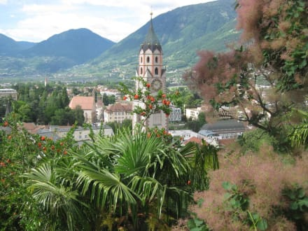 View picture - Merano Trail - Vellau cliff