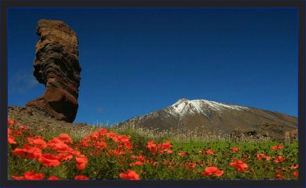 * Pico de Teide* - Teide Nationalpark