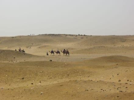 Blick zu Wüste - Pyramiden von Gizeh