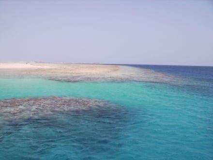 Rifff der Sandy-Island - Tobia Island