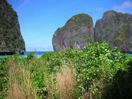 maya bay - Maya Bay / The Beach