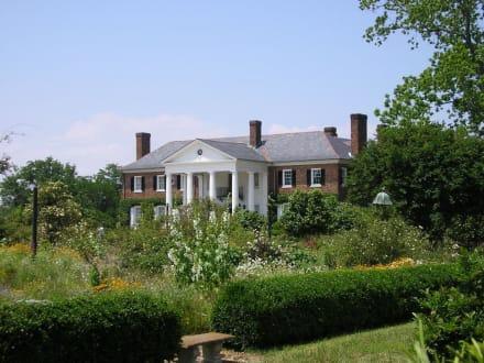 Boone Hall Plantage nördlich von Charleston - Boone Hall Plantation