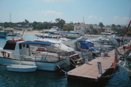 Beach/Coast/Harbor - Yacht Harbour Latsi