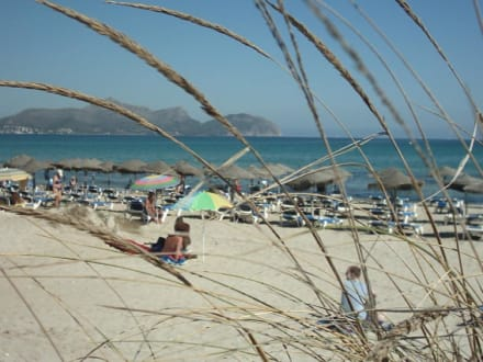 Strand von Can Picafort - Strand Can Picafort