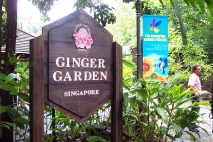 Eingang Botanischer Garten Singapore - Botanischer Garten Singapur