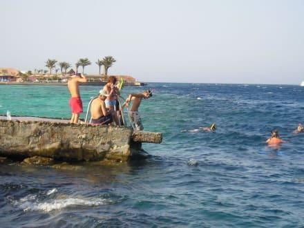 Ein- und Ausstieg Hausriff - Schnorcheln Hausriff Bel Air Beach /Arabia Hurghada