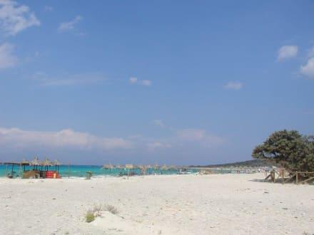 Strand von Chrissi Insel - Insel Chrissi
