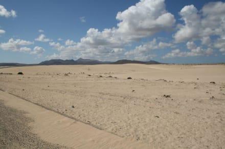 Sonstiges Landschaftmotiv - Naturpark Dünen von Corralejo