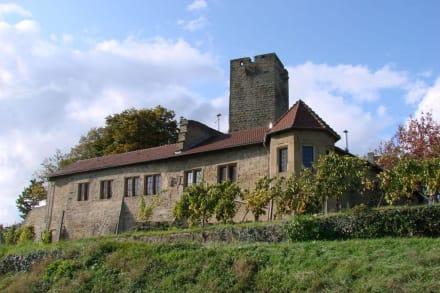 Die Burg Ravensburg