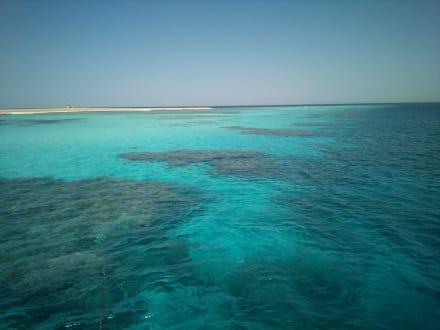 Einer von vielen Tauchplätzen - Tauchbasis Dive Connection El Gouna