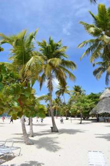 Strand auf der Barcadi Insel - RH Tours Ausflüge Punta Cana