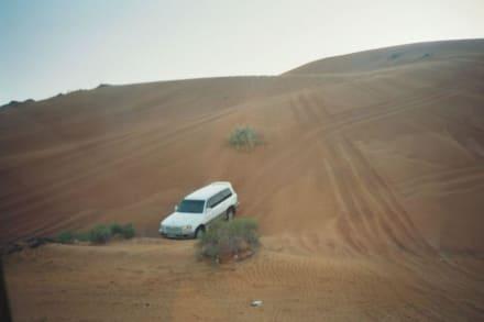 Wüstensafari - Wüstentour Sharjah