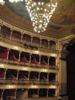 Theater Baltazar Dias - Theater Baltazar Dias