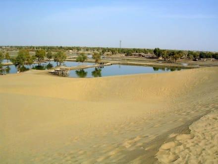 Taklamakan Wüste - Taklamakan Wüste
