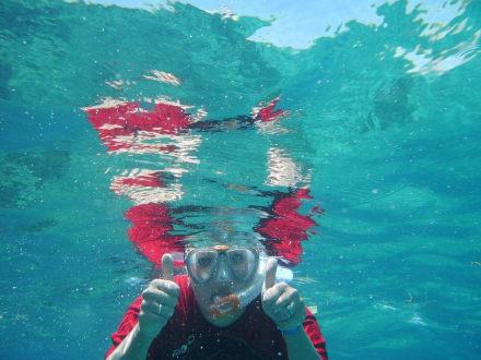in Catalina hat man 40 m weit Sicht - Unterwasser