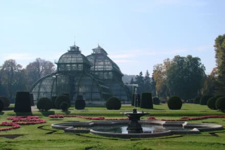 Palmenhaus - Tiergarten Schönbrunn