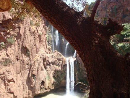 Cascades d'Ouzoud - Wasserfälle Ouzoud