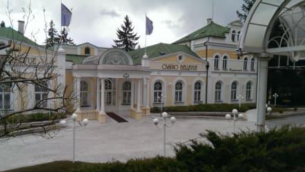 Ingo Casino