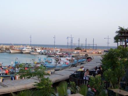 Hafen von Aiya Napa - Fischereihafen Ayia Napa/Agia Napa