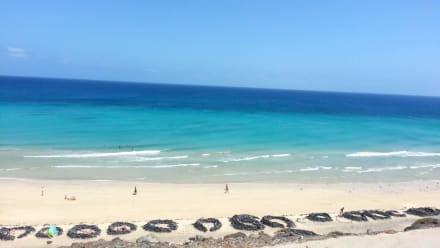 Strand beim Hotel - Suitehotel Monte Marina Playa