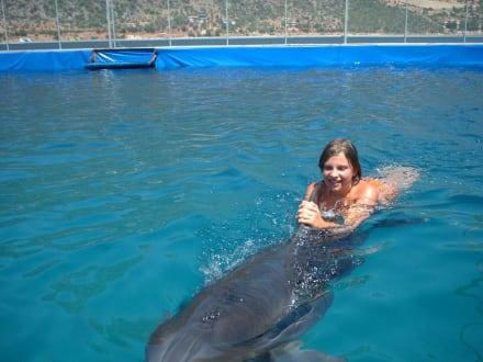 Mischa und  Sina - Delfinschwimmen Kas