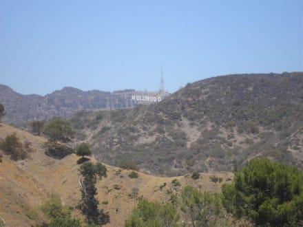 Hollywood Buchstaben - Hollywood Bowl