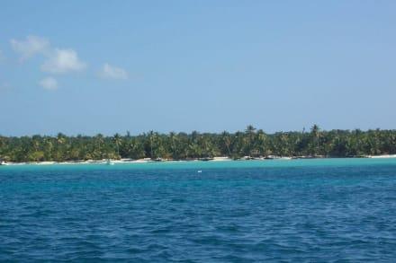 Blick vom Katamaran auf Saona - Isla Saona