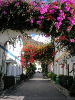 Wunderschöne Hafengassen - Altstadt Puerto de Mogán