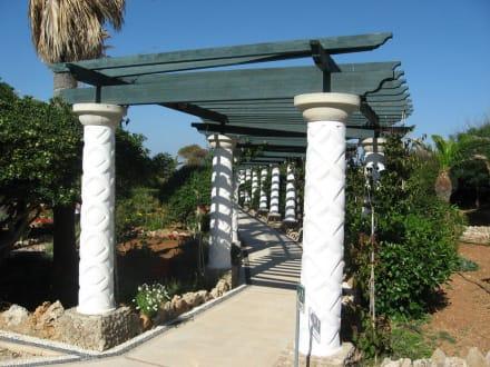 Garten der Therme - Kalithea Thermen