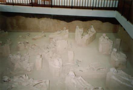 Ausgrabungsstätte - Museum Chorro de Maíta