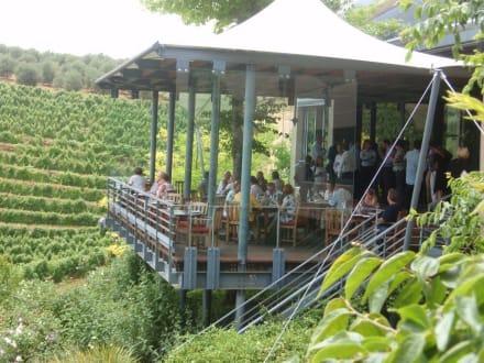Viele Weingüter bewirtschaften en ein Restaurant - Weingebiet Stellenbosch